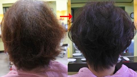 この写真はサプリカラーですが、90%以上の美容室は進化したシステム:マレーア・レナータカラーへ転換しています。なおこの施術に用いたミコノスは既に廃盤となっています。