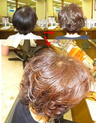 この写真のようなイオンカール(パーマ)は進化したシステム:マレーア・レナータカール(パーマ)へ転換しています。なおこの施術に用いたミコノスは既に廃盤になりました。